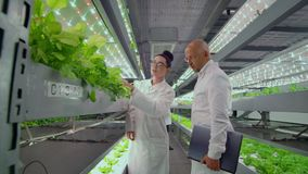 A group of people in white coats analyze and discuss the results of the growth of vegetables and plants on a modern