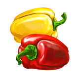 Group peppers vector illustration  hand drawn Stock Photos