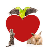 Group of pets together with big red heart . Space for text. isolated Royalty Free Stock Photos
