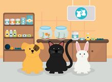 Group of pets in veterinary. Vector illustration design royalty free illustration