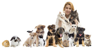 Group of pets. On a white background Royalty Free Stock Photos