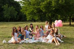Group photo of young girls on picnic party at nature stock photo