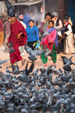 A group of pigeons early in the morning at the Boudhanath Stupa Royalty Free Stock Images
