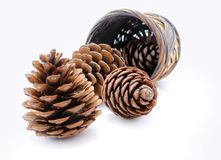 Group of pine cones and wicker basket Royalty Free Stock Photo