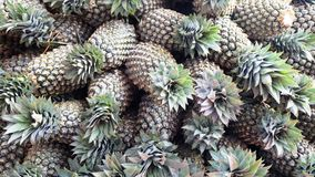 A group of pineapples Royalty Free Stock Photography