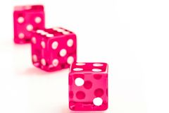 Group of pink dices. Three pink dices on white background Royalty Free Stock Photos
