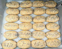 Group of plated whole grain rolls with poppy seeds unbaked. On baking paper Stock Photo
