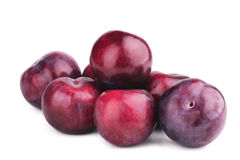Group of plum fruits on white. Background Royalty Free Stock Photos