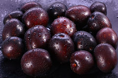 Group of plums Stock Image