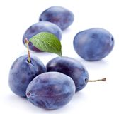 Group of plums. Stock Image