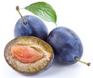 Group of plums with leaf. Royalty Free Stock Images