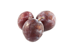 Group of plums. With leaf isolated on a white background Royalty Free Stock Photo