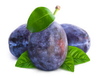 Group of plums with leaves Stock Image