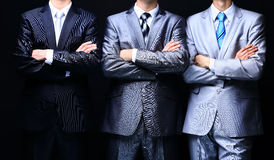 Group portrait of a professional business team Stock Photo
