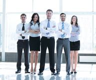 Group portrait of a professional business team looking confident Royalty Free Stock Images