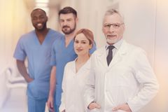 Group of positive people enjoying their profession. Good job. Delighted senior men wearing glasses and keeping smile on face while posing on camera Stock Images
