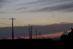 A group of power grid poles. Sunset Stock Photo