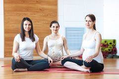 Group of pregnant women engaged in yoga stock photography