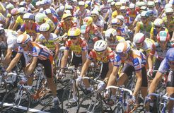 Group of Professional bicycling racers Royalty Free Stock Image
