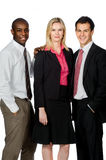 Group of Professionals Stock Photography