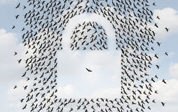 Group Protection Royalty Free Stock Images