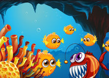 A group of puffer fishes and a scary piranha inside the cave Royalty Free Stock Photography