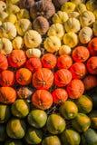 Group Pumpkin Closeup Texture Field Many Colorful Orange White G Stock Photo