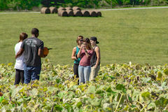 Group in a Pumpkin Patch. 25th Annual Pumpkin Festival, Christiansburg, VA – October 1st: A group of visitors taking photographs in a pumpkin patch on stock image