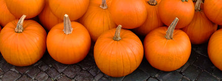 Group of pumpkins on pavements Royalty Free Stock Photography