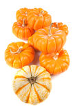 Group of pumpkins on white Royalty Free Stock Photos