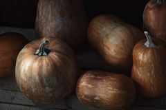 Group of pumpkins on a wooden table Royalty Free Stock Photos