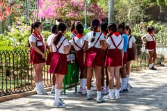 The group of pupils girls in uniform, staying together, royalty free stock image