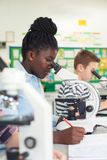 Group Of Pupils Using Microscopes In Science Class. Pupils Using Microscopes In Science Class Royalty Free Stock Photo