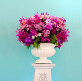 Group of purple flower decorative Stock Images