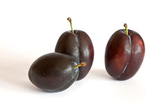 Group of purple plums  on a white Royalty Free Stock Photo
