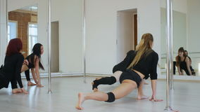 Group of pyoung women in a stretching class. Professional shot in 4K resolution. 087. You can use it e.g. in your commercial video, business, presentation stock footage