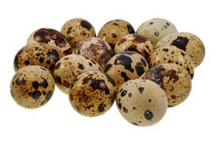 Group of quail eggs Royalty Free Stock Photos