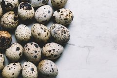 Group of quail eggs on a marble background. Group of spotted quail eggs on a white marble background. Easter. Copyspace Stock Image