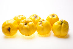 Group of quinces pear Stock Photography