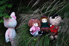A group of rag babies Stock Images