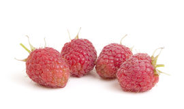 Group of raspberry on white background Stock Images