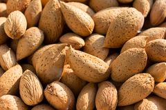 Group of raw almonds, background.  Main ingredient for nougat Sicilian. Group of raw almonds, with skin and rind,background. Main ingredient for nougat Sicilian royalty free stock images