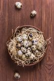 Raw quail eggs. Group of raw quail eggs on wooden background Stock Photo