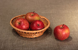 Group of a red apples in basket. Stock Image