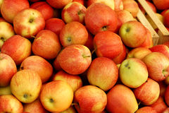 Group of red apples. Forming a background Royalty Free Stock Photos