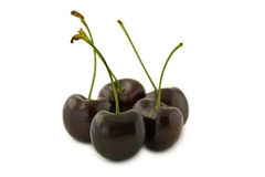 Group of red cherries. Group of dark red cherries, with stalks. Isolated on white background, with shadow Royalty Free Stock Photo