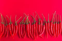 Group of red chili peppers. On red background royalty free stock photography