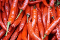 Group of Red Chili Peppers. At merchant in traditional market in Indonesia Royalty Free Stock Images