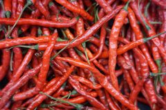 Group of Red Chili Peppers. At merchant in traditional market in Indonesia Royalty Free Stock Photo