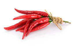 Group of red chilies Stock Images